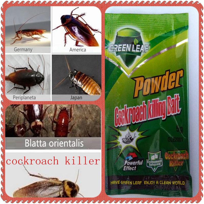 Pest Control German Russian American Australian Cockroach